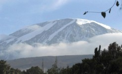 kilimanjaro trail marathon