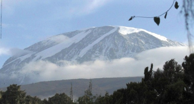 Africa Singles Safari and Kilimanjaro Climb