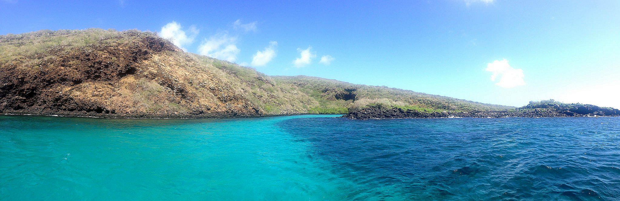 Galapagos Singles Travel Tours Galapagos Vacations Packages - Galapagos vacations
