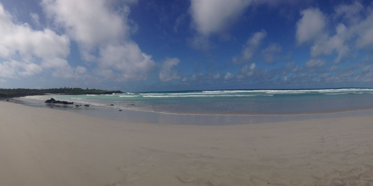 galapagos singles vacation tortugua bay