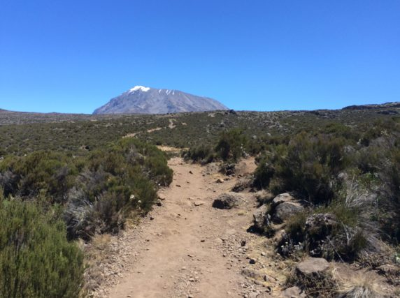 Climb to the Summit